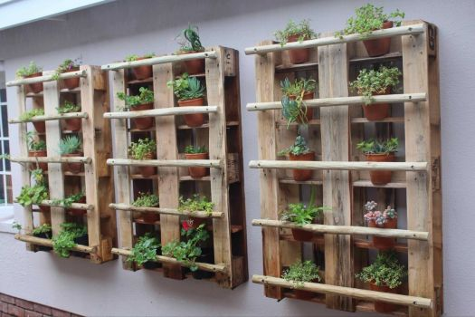 Daughter's Pallets for Succulents