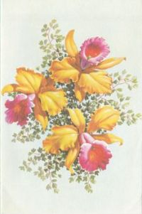 Postcard & envelope pictures 005 - Red & yellow flowers