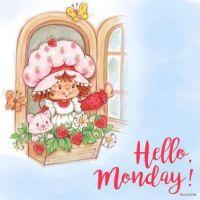 Hello Monday !