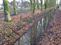 Winterswijk A ditch between the high and the lower side of a park