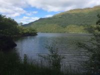 The bonnie banks of Loch Lomond