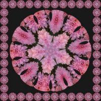 Kaleido - růžová krása... Kaleido - pink beauty ...