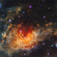 Star Formation in the Tadpole Nebula