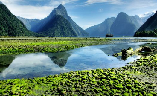 Milford Sound, New Zealand at low tide