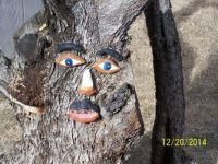 Tree Guy (ol Blue Eyes)
