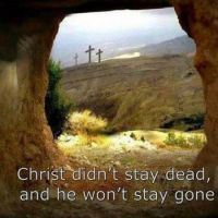 Christ is not gone