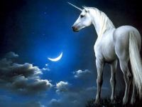 3  ~  'Unicorn under a starry sky.'