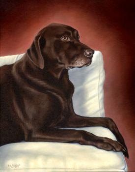 Chocolate Lab Pet Portrait