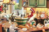 Kitties in the Kitchen