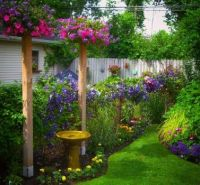 Garden in Buffalo, NY posted by Jim Charlier