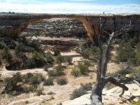 Bridges National Monument
