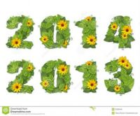 new-year-date-lined-green-leaves-drops-dew-yellow-flowers-isolated-white-background-32938446