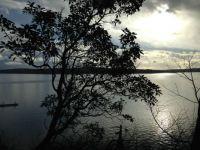 Camano Island, WA