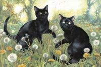 'Cats Playing Amongst The Dandelions' By Christie Schelling