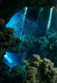 4  ~  'Under Water Universe'