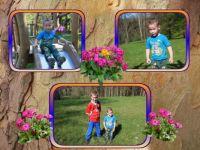 děti - dnes v Konopišti