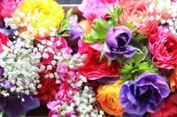 flowers.jpg3