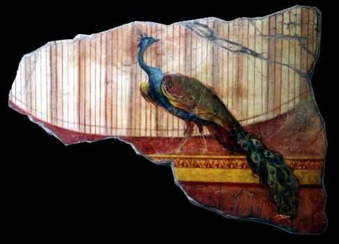 Peacock fresco, Pompeii