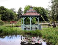 Chickerell Water Gardens (83)