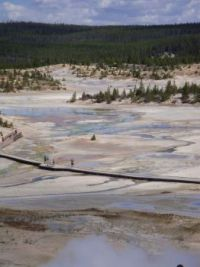 Porcelain Basin in Norris Geyser Basin at Yellowstone National Park