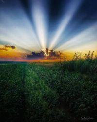 Breathtaking Nebraska Sunset