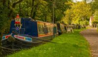 A cruise along the Staffordshire and Worcestershire Canal, Stourport to Great Haywood Junction (389)