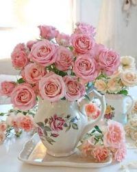 Růže v malované váze