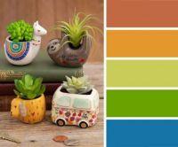 Cute Succulent Planters