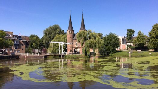 Delft 2020