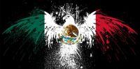 Mexico Eagle