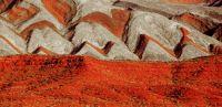 Utah Wilderness 7