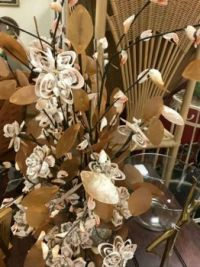 Shell Flowers Theme shells