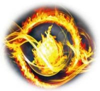 dauntless symbol veronica roth
