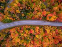 Fall foliage, N.H. - taken from a drone