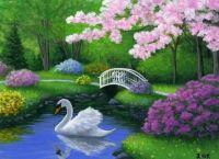 Swan in Garden