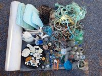 Shoreline debris