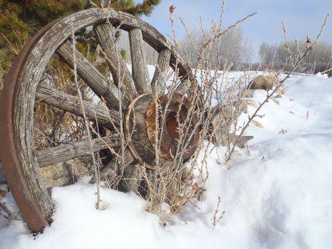 Wagon Wheel - Calgary