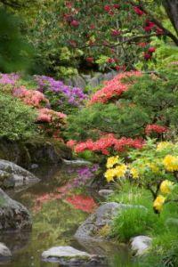 Japanese garden, Seattle Washington