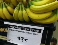 boneless fruit