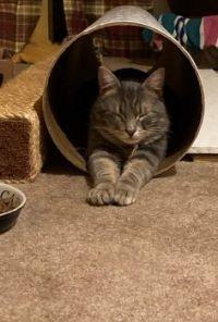 Tunnel nap?! ;-))