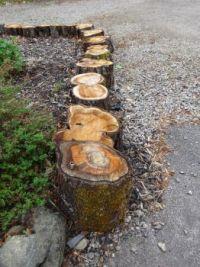 Tree step border