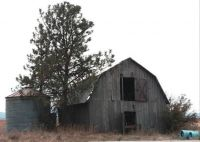 Old Barn on 41