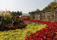 Biltmore summer garden
