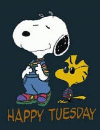 Happy Tuesday