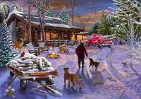 Winter Refuge