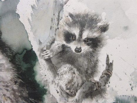 Close up of Watercolor of Two Raccoons