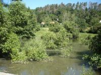 Chaloupecký rybník