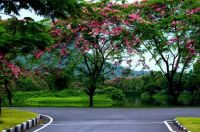 Natural Beauty of IIT Guwahati, India