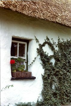 Cottage Window - Bunratty Park