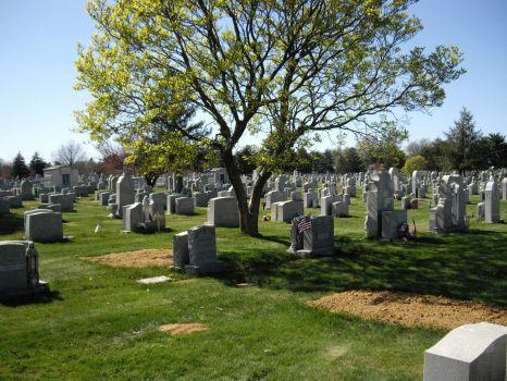 Holy Cross Cemetery, Yeadon, PA